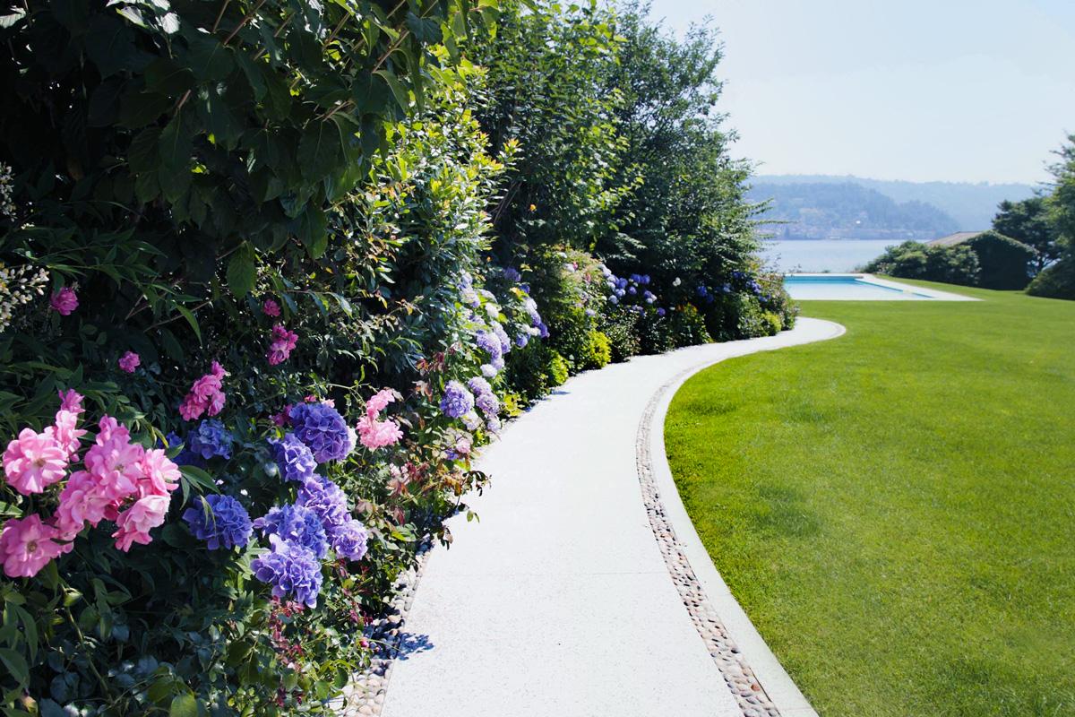 Ortensie Bianche Come Curarle elegante giardino con piscina a sfioro e vista lago